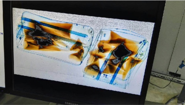 A replay of the digital footage stored in the X-ray scanner showed that the suitcases were screened, and the horns could clearly be seen